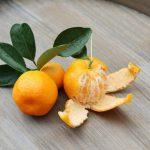razlika med mandarino in klementino