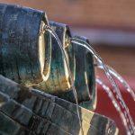 cvičkova fontana